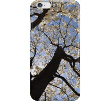 Magnolias in Fisheye iPhone Case/Skin