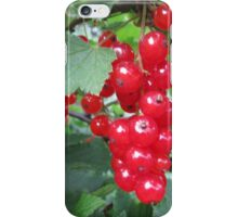 RED-CURRANTS. iPhone Case/Skin