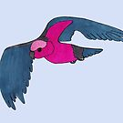 Galah in flight by Anne van Alkemade