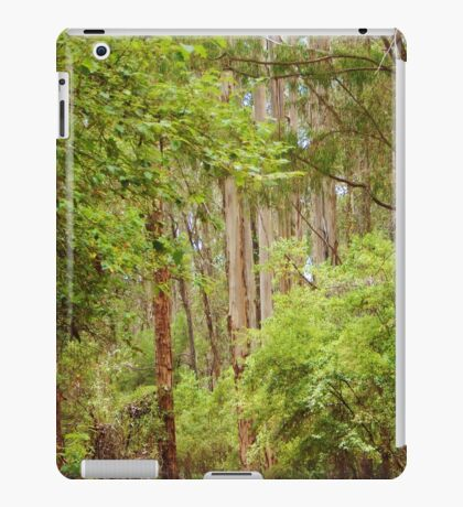 Changing Scenes iPad Case/Skin
