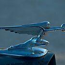 Hood ornament, Albufiera, Spain by fauselr