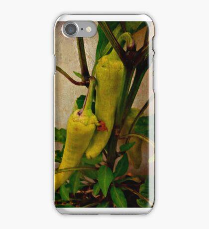 #capsicum iPhone Case/Skin