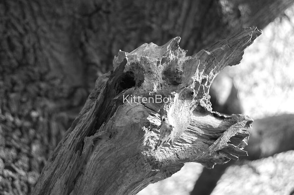 """Half man-tree, half lizard...gnarly"" by KittenBoy | Redbubble - photo#47"