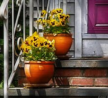 Pots of Pansies by Mike  Savad