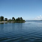 Tip of Bainbridge Island and the Puget Sound by pinklilypress