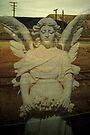 desert angel.....my lady of the slag heap by Juilee  Pryor