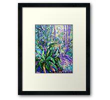 Walkway Tamborine Mountain Botanical Gardens  Framed Print