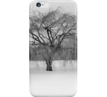 Winter's Coming iPhone Case/Skin