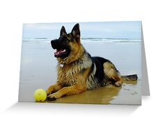 Mr Max at the Beach Greeting Card