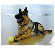 Mr Max at the Beach Poster