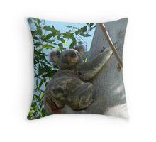 Cute & Cuddly Koala Throw Pillow