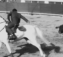 HORSE AND BULL IN ACTION by ZILPA