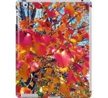 Fall Orange iPad Case/Skin