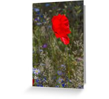 Dancing in the Wind Greeting Card
