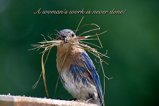 Woman's work is never done! by Bonnie T.  Barry