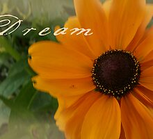 What Dreams Are Made Of by Pamela Maxwell