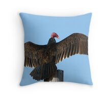Turkey Vulture The Horaltic Pose Throw Pillow