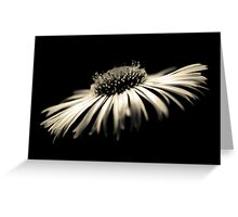 Depth of Purity Greeting Card