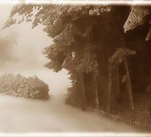 Winter Garden by Angelika  Vogel