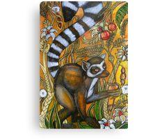 Eden (Ring-Tailed Lemur) Metal Print