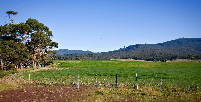 typical Tassie scenery by Martin Pot