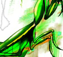 Praying Mantis Doodle Art Sticker