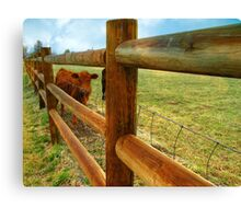 Training..Keeper of the Fence Canvas Print