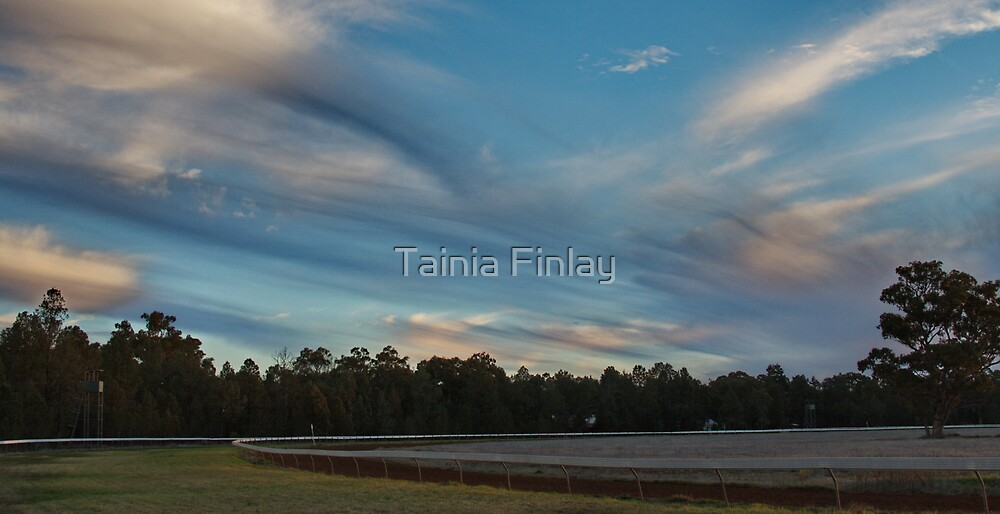 Skylines at Dusk by Tainia Finlay
