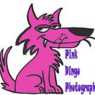 Pink Dingo Photography Logo by Kirsten H