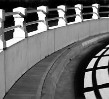 Curves & Shadow by Laurie Minor