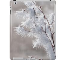 Winter Sculpture iPad Case/Skin