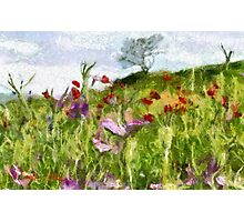 A Meadow of Spring Flowers in Romania - all products Photographic Print