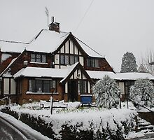 Oxted RBL in the snow by briandhay