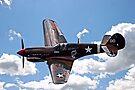 P-40 Warhawk by DJ Florek