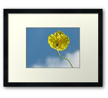 Looking © Framed Print