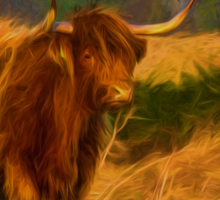 Highland cow with painterly effect Sticker