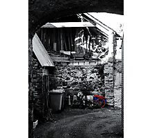 Caught In A Trap! Photographic Print