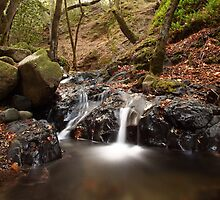 UVAS CANYON closer look at small dual waterfall light water flow in the Fall by Brian K Bostwick