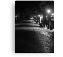 Road to Cathedral Canvas Print