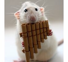 Playing the panflute. by Ellen van Deelen