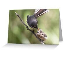 Grey Fantail and chick ~ Thanks Mum  Greeting Card
