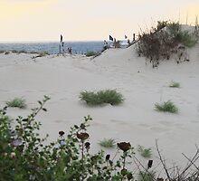 Sand dune overlooking the sea by gaddi s