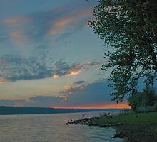 Sunset On Owasco by joan warburton
