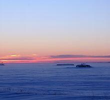 Cold Prairie Dawn by Stephen Thomas