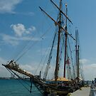 19th Century Sailing Ship by gharris