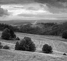 Landscape around Libverda Spa, Czech Republic by Lenka