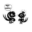 Bird Fight by greg orfanos