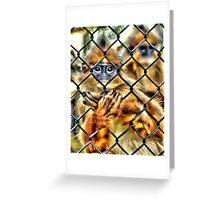 Prisoner? Greeting Card