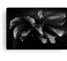 from out of the darkness we shall emerge Canvas Print