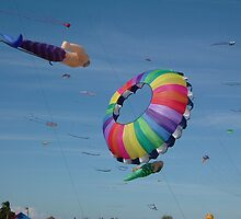 Redcliffe Kite Festival 1 by rufflesal
